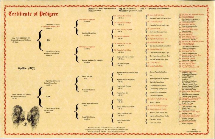 chart_pedigree